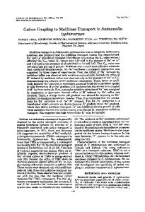 typhimurium - Journal of Bacteriology