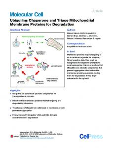 Ubiquilins Chaperone and Triage Mitochondrial ... - Cell Press