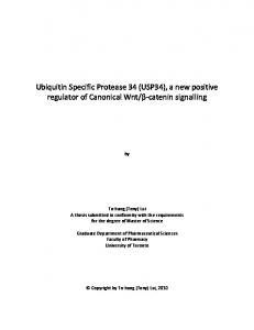 Ubiquitin Specific Protease 34 (USP34), a new positive ... - T-Space
