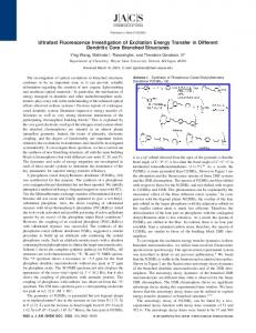 Ultrafast Fluorescence Investigation of Excitation ... - ACS Publications