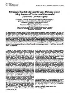 Ultrasound guided site specific gene delivery ... - Wiley Online Library