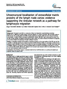 Ultrastructural localization of extracellular matrix proteins ... - CiteSeerX