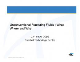 Unconventional Fracturing Fluids: What, Where and Why