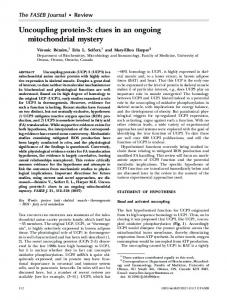 Uncoupling protein-3: clues in an ongoing ... - Semantic Scholar