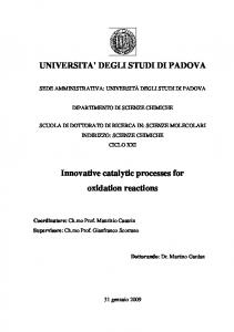 UNIVERSITA' DEGLI STUDI DI PADOVA Innovative catalytic ...