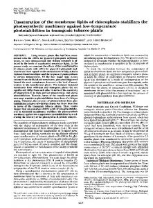Unsaturation of the membrane lipids of chloroplasts stabilizes ... - PNAS