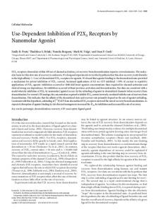 Use-Dependent Inhibition of P2X3 Receptors by ... - Semantic Scholar