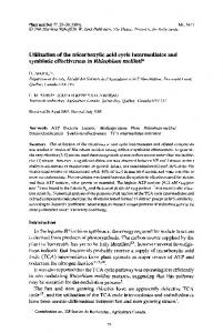 Utilization of the tricarboxylic acid cycle intermediates ... - Springer Link