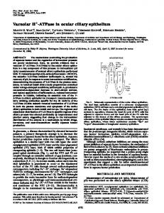 Vacuolar H -ATPase in ocular ciliary epithelium - Proceedings of the ...