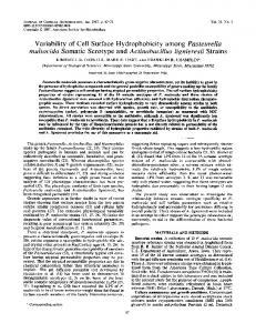 Variability of Cell Surface Hydrophobicity among Pasteurella ...