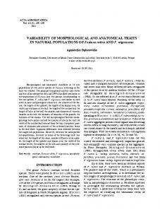 VARIABILITY OF MORPHOLOGICAL AND