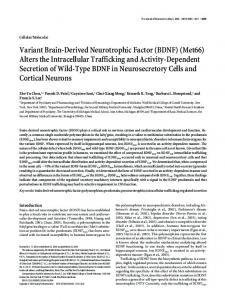 Variant Brain-Derived Neurotrophic Factor (BDNF) - Semantic Scholar