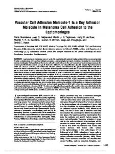 Vascular Cell Adhesion Molecule-1 Is a Key Adhesion ... - Nature