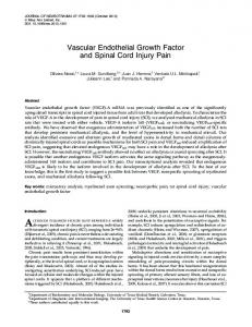 Vascular Endothelial Growth Factor and Spinal ... - Semantic Scholar