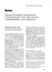 Vascular permeability factor/vascular endothelial growth factor ...
