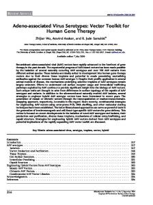 Vector Toolkit for Human Gene Therapy - Semantic Scholar
