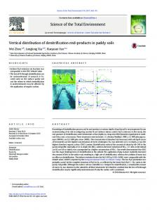 Vertical distribution of denitrification end-products in