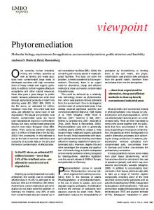viewpoint - Wiley Online Library
