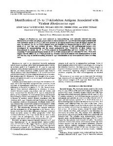 Virulent Rhodococcus equi - Journal of Clinical Microbiology