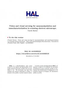 Vision and visual servoing for nanomanipulation and ...