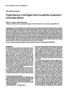 Visual Neurons in the Pigeon Brain Encode the Acceleration of