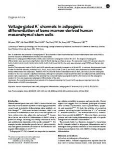 Voltage-gated K+ channels in adipogenic ... - BioMedSearch