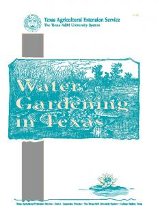 Water Gardening in Texas