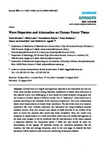 Wave Dispersion and Attenuation on Human Femur Tissue - MDPI