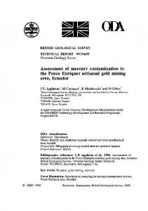 WC/96/055 Assessment of mercury contamination in ...