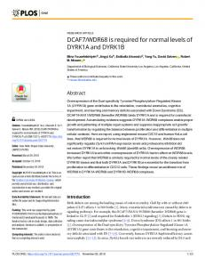 WDR68 is required for normal levels of DYRK1A and ... - PLOS