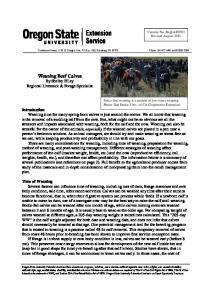 Weaning Beef Calves - Oregon State University Extension Service