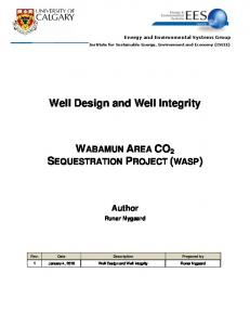 Well Design and Well Integrity