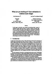 What are you looking at? Gaze estimation in