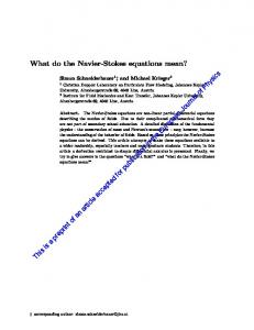 What do the Navier-Stokes equations mean?