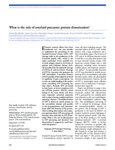 What is the role of amyloid precursor protein ...