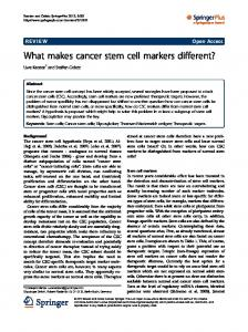 What makes cancer stem cell markers different? - World News MD