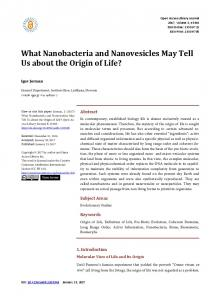 What Nanobacteria and Nanovesicles May Tell Us