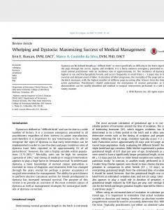 Whelping and Dystocia: Maximizing Success of