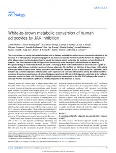 White-to-brown metabolic conversion of human adipocytes by ... - Nature