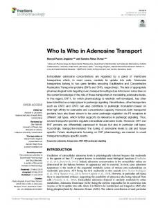 Who Is Who in Adenosine Transport