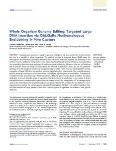 Whole Organism Genome Editing: Targeted Large ... - Semantic Scholar