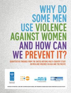 Why Do Some Men Use Violence Against Women and How ... - UNDP