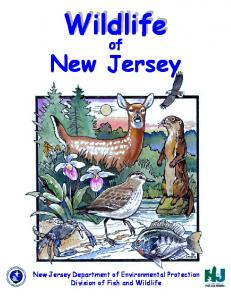 Wildlife of New Jersey Coloring Book - State of New Jersey