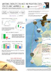 Wintering energetic balance and migration costs for