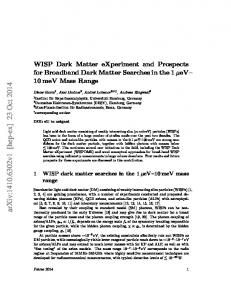 WISP Dark Matter eXperiment and Prospects for Broadband Dark ...