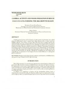 wood research cambial activity and wood formation in beech fagus ...