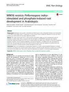 WRKY6 restricts Piriformospora indica-stimulated ... - BMC Plant Biology