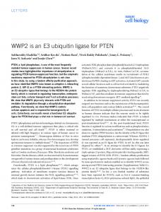 WWP2 is an E3 ubiquitin ligase for PTEN - Nature