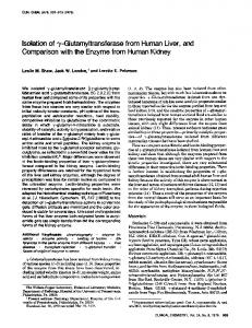 y-Glutamyltransferasefrom Human Liver, and ... - Clinical Chemistry