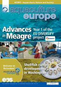 Year 1 of the EU DIVERSIFY project